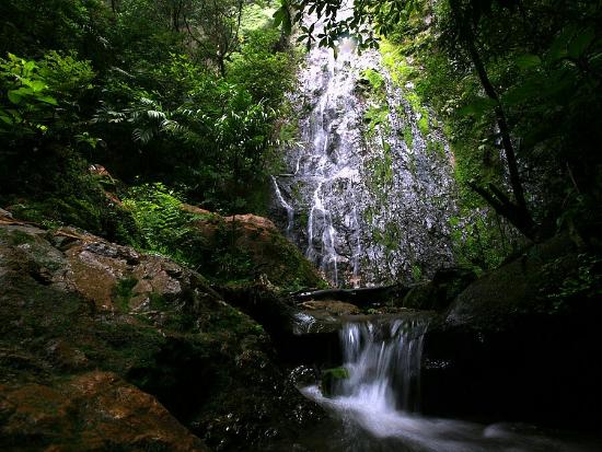 Taman Nasional La Tigra di Honduras