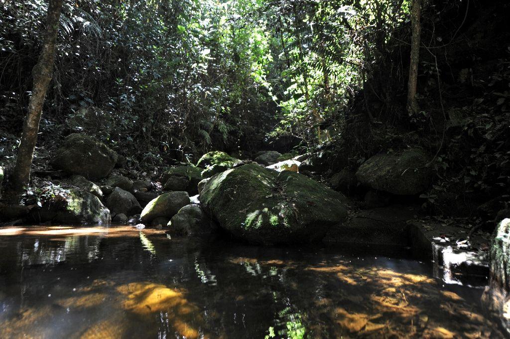 Taman Nasional La Tigra di Honduras1