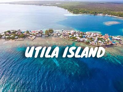 Tempat Rekreasi Utila Pulai Bay di Honduras1